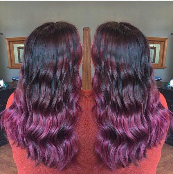 Black and Purple Lilac