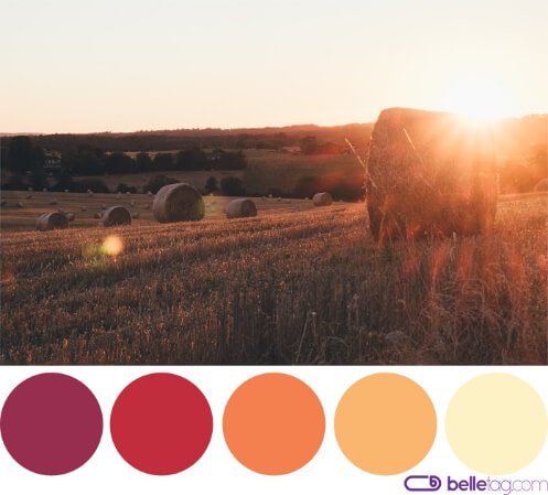 Warm color palette – is this your undertone?